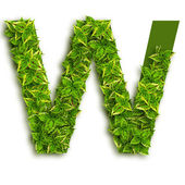 Letter W, With Leaves — Stock Photo