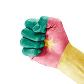 Cameroon Flag On Clenched Fist Hand — Stock Photo