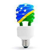 Flag Of Solomon Island On Bulb — Stock Photo