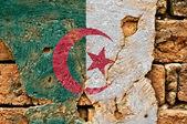 Grunge Flag Of Algeria — Stock Photo