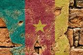 Flaga ilustracja Kamerunu — Zdjęcie stockowe