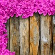 Purple flowers of bougainvillea on old wooden — Stock Photo #44176497