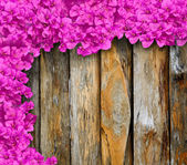 Purple flowers of bougainvillea on old wooden  — Stock Photo