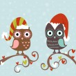 Christmas card of owls in hats sitting on a tree branch — Stock Vector