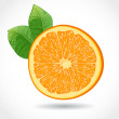 Royalty-Free Stock Vector Image: Fresh juicy piece of orange isolated