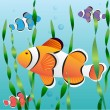 Realistic exotic colorful fish - Stock Vector