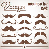 Vintage hipster trendy moustache collection — Stock Vector