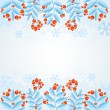 Winter decorative frame with rowan berries — Stock Vector