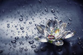 Glass flower and drops — Stock Photo
