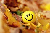 Autumn ball smiles — Stock Photo