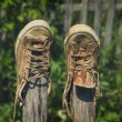 Old sneakers — Stock Photo #30371581