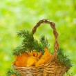 Chanterelle mushrooms in a basket - Stock Photo
