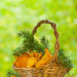 Stock Photo: Chanterelle mushrooms in basket