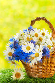 Bouquet of daisies and cornflowers in the basket — Стоковое фото