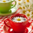 Herbal chamomile tea in a red cup — Stock Photo