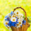 Bouquet of daisies and cornflowers in the basket — Stock Photo