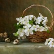 Stock Photo: Still life with basket of flowers apple