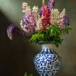 Still life with flowers lupine - Stockfoto