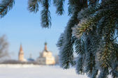 Winter Christmas landscape — Stock Photo