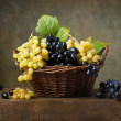 Still life with grapes in a basket — Stock Photo