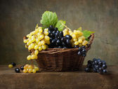 Still life with grapes in a basket — 图库照片