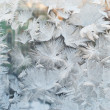 Frozen window — Stockfoto