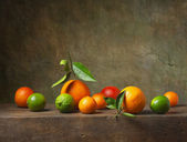 Still life with citrus fruit — Stock Photo