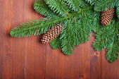 Fir branches with cones on wooden boards — Stock Photo
