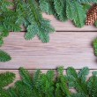Fir branches with cone on wooden boards — Stock Photo #48290707