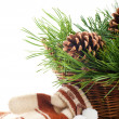 Mittens and pine branches — Stock Photo #7539863