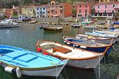 Giglio Island small port — Stock Photo