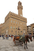 Horse coach waiting at Signoria square — Stock Photo