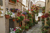 Flowery alley in Spello — Stock Photo