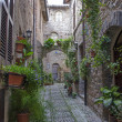 Stock Photo: Alley in Spello