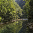 Vintgar gorge — Stock Photo