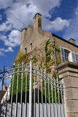 French house covered by climbing ivy — Stock Photo