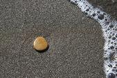 En la playa de guijarros — Foto de Stock