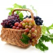 Basket of grapes on a white background. - Photo