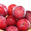 Stock Photo: Ripe red plums.