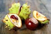Ripe chestnuts. — Stock Photo
