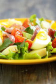 Salad and potatoes, egg and anchovies. — Stock Photo
