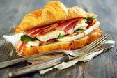 Appétissant sandwich closeup. — Photo