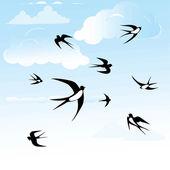 Bird swallow set. — Stock Vector