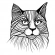Vector illustration of cat head — Stock Vector