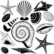 Shells collection. Vector set with seashells and starfish — Stock Vector