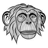 Monkey chimpanzee head — Stock Vector
