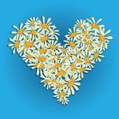 Heart flowers camomile — Vector de stock