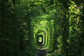 Natural tunnel — Stock Photo