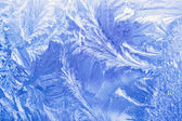 Ice pattern on a window in winter time — Stock Photo
