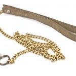 Dog leather and chain leash — Stock Photo
